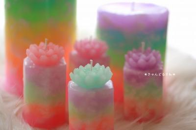 虹の蓮2.jpg